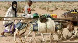 Sahel povero
